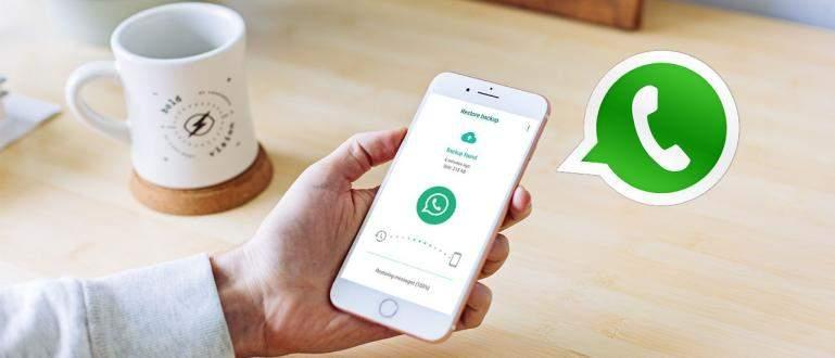 Cara Mengembalikan Pesan WhatsApp yang Hilang