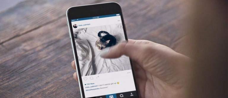 Panduan Mudah Cara Download Video Instagram Lewat HP
