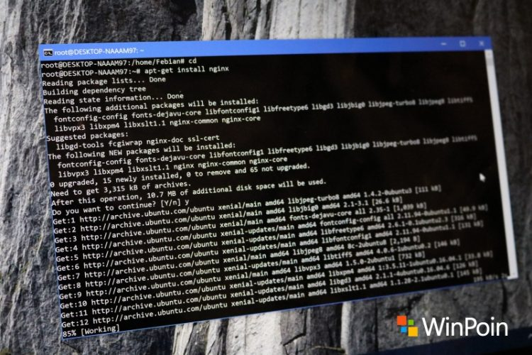 Tips Uninstall Bash Linux di Windows 10