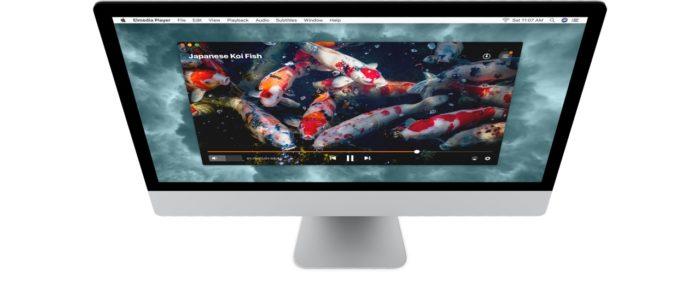 Daftar Software Pemutar Video